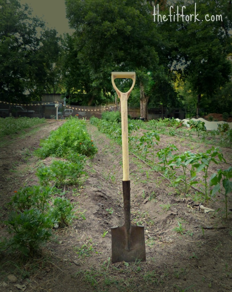 farm shovel thefitfork
