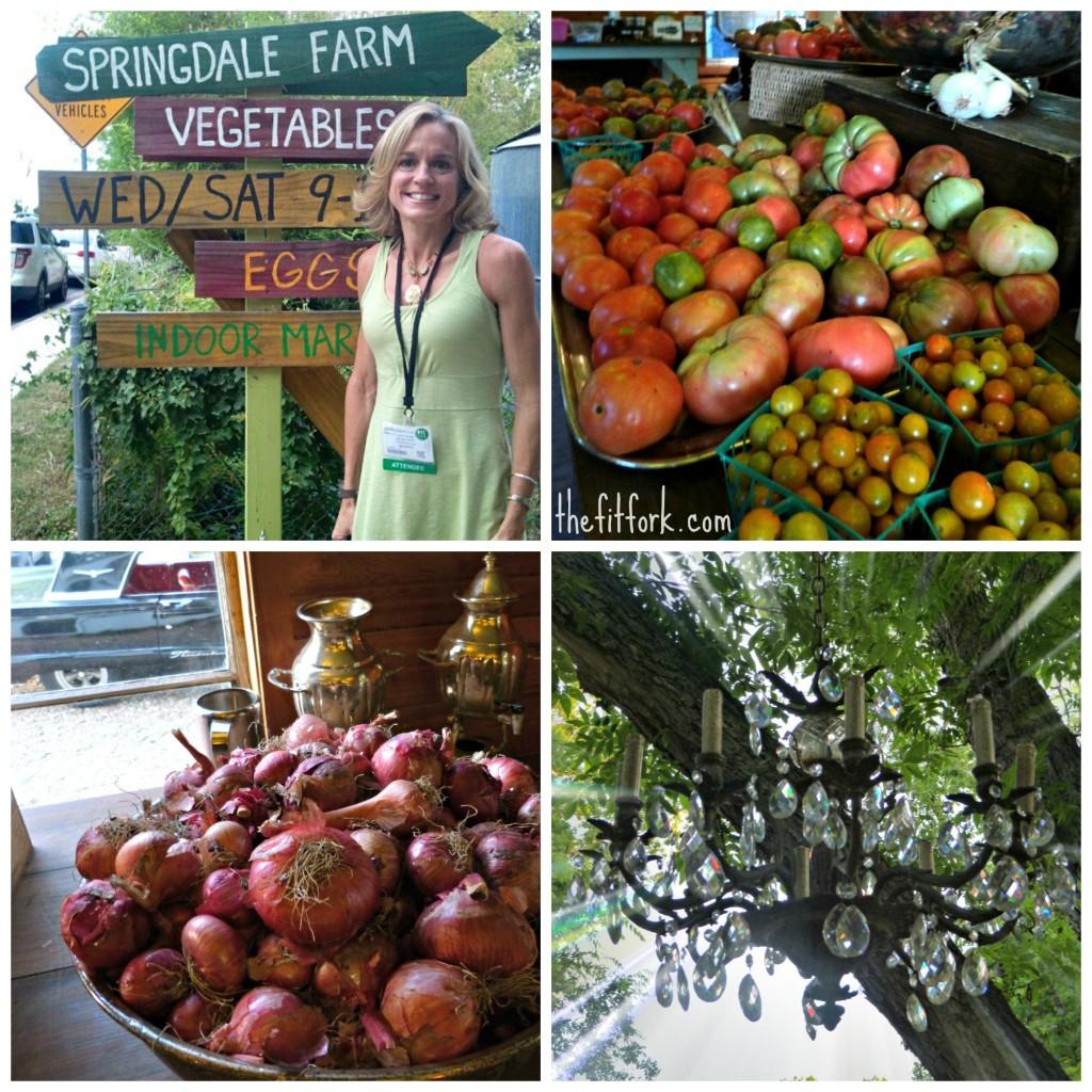 springdale farm collage