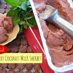 Summer Loving |Roasted Strawberry Coconut Milk Sherbet