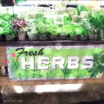 Herbalicious | More Herbs, Less Salt Day