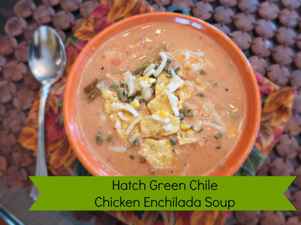 jennifer fisher thefitfork.com hatch green chile chicken enchilada soup