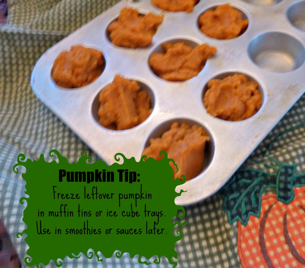 thefitfork.com pumpkin tip