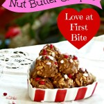 Love at First Bite! Nut Butter Crispies with Cacao Nibs Recipe