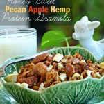 Honey-Sweet Pecan Apple & Hemp Granola Recipe