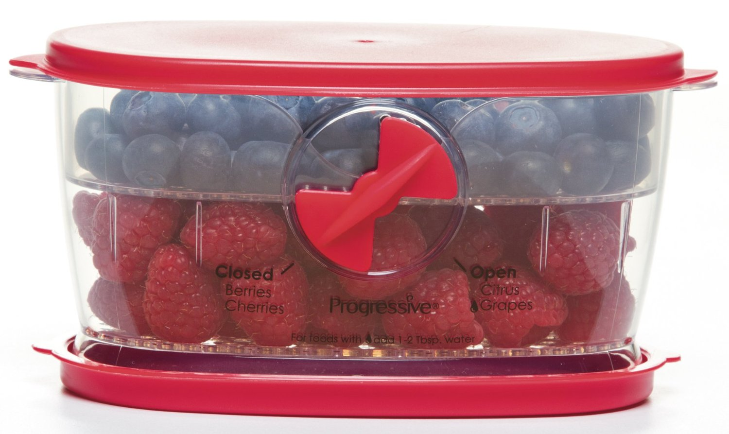 berry storage container