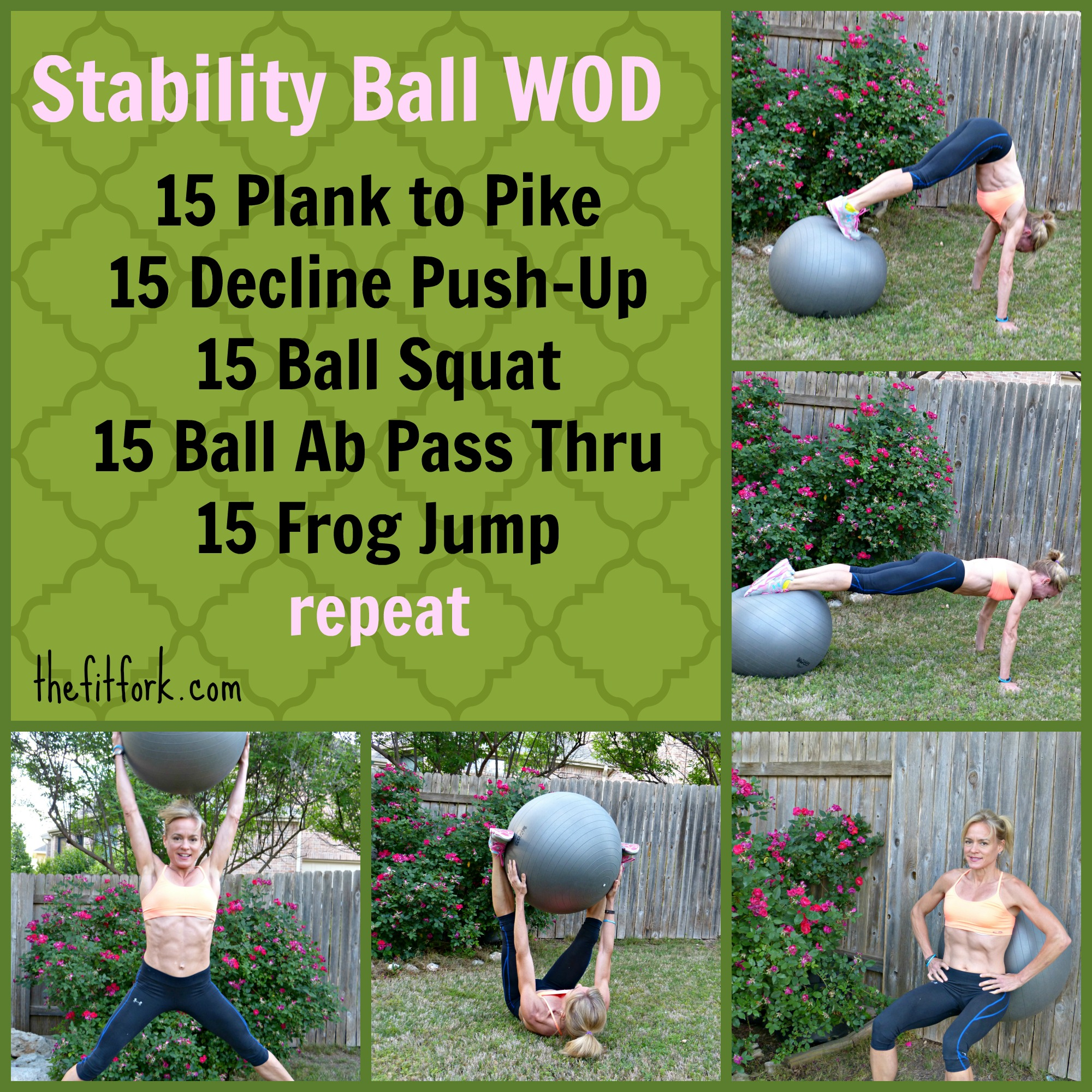 Stablity Ball Workout
