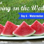 Watermelon Smoothies – Day 6 #LivingOnTheWedge
