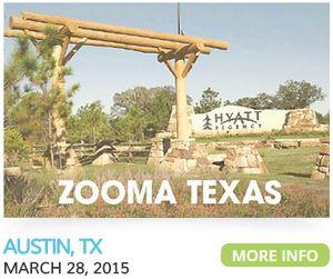 zooma run texas