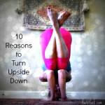 10 Reasons to Yoga Upside Down