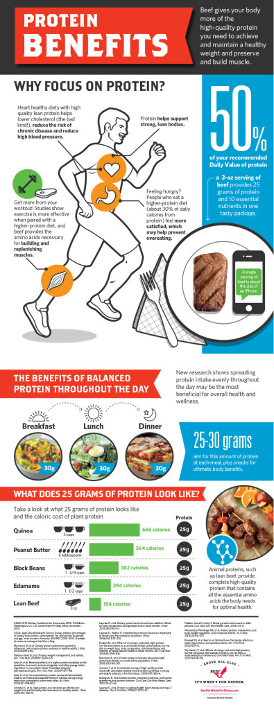 Power of Protein Infographic