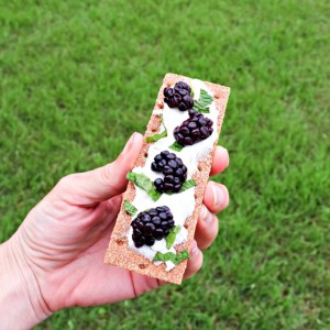 Cream Cheese, Blackberries and Mint on Whole Grain Crispbread