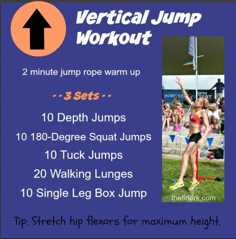 verticle jump plyometric power workout