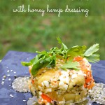 Kiwi, Apricot and Feta Salad with Hemp Honey Dressing #NOWwellness