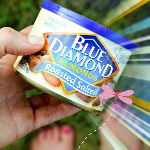 Blue Diamond Almonds - Lightly Salted