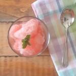 Sugar Free Watermelon Sorbet - Fitfluential.com