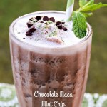 Chocolate Maca Mint Chip Protein Smoothie – Hoping #FTW