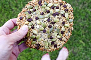 Chocolate Speckled and Seeded Breakfast Cookie