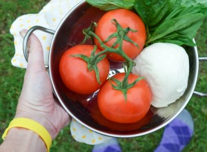 tomatoesmozerella in bowl feet