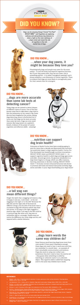 purina infographic