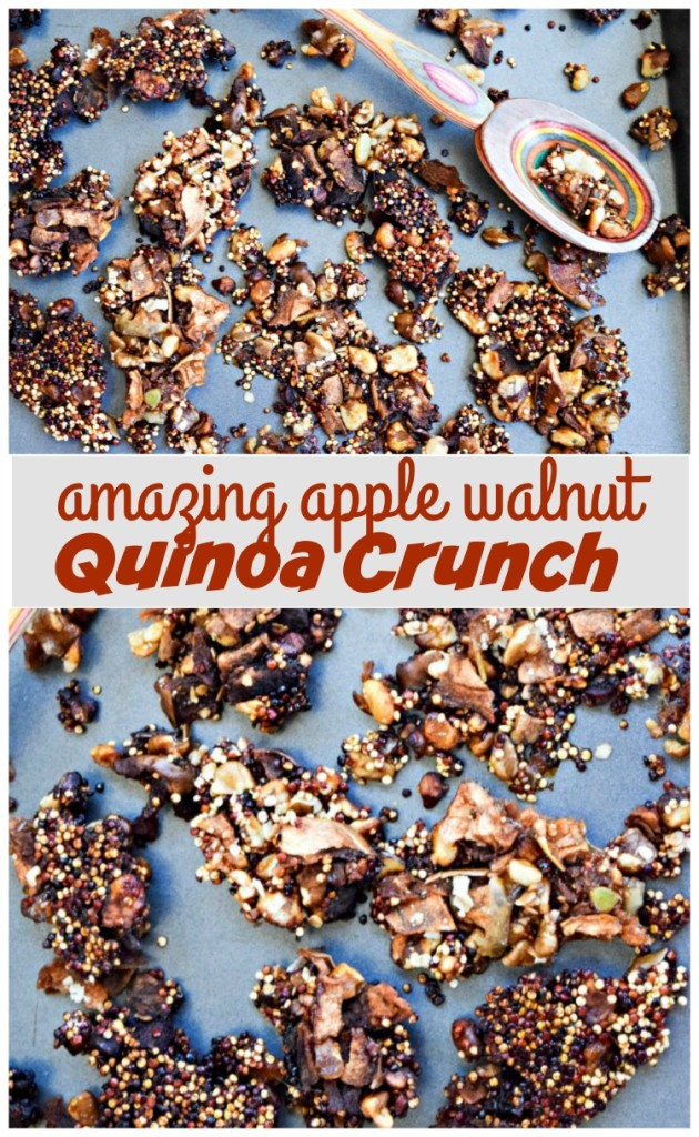 Apple Walnut Quinoa Crunch is a healthy alternative to peanut brittle candy -- it packs a bit of protein from the ancient grain Quinoa and is dairy-free, gluten-free and made without traditional corn syrup (only a touch of coconut sugar and 100 percent apple cider)