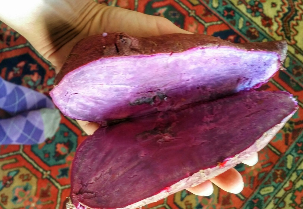 Stokes Purple Sweet Potato