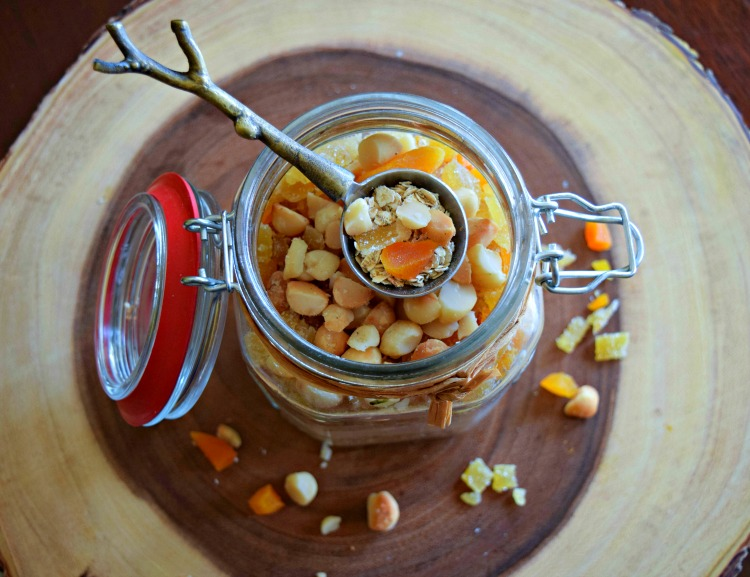 Apricot Ginger Macadamia Protein Oatmeal Mix