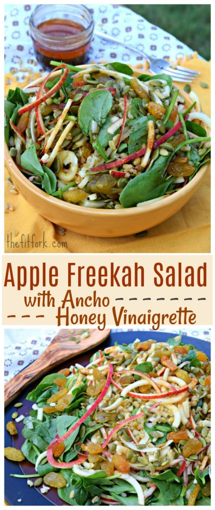 Apple Freekah Salad with Amcho Honey Vinaigrette makes a hearty yet healthy salad pack with whole grains, fruits and seeds for a light lunch or dinner. The southwestern-inspired ancho dressing gives a little kick to the sweet!