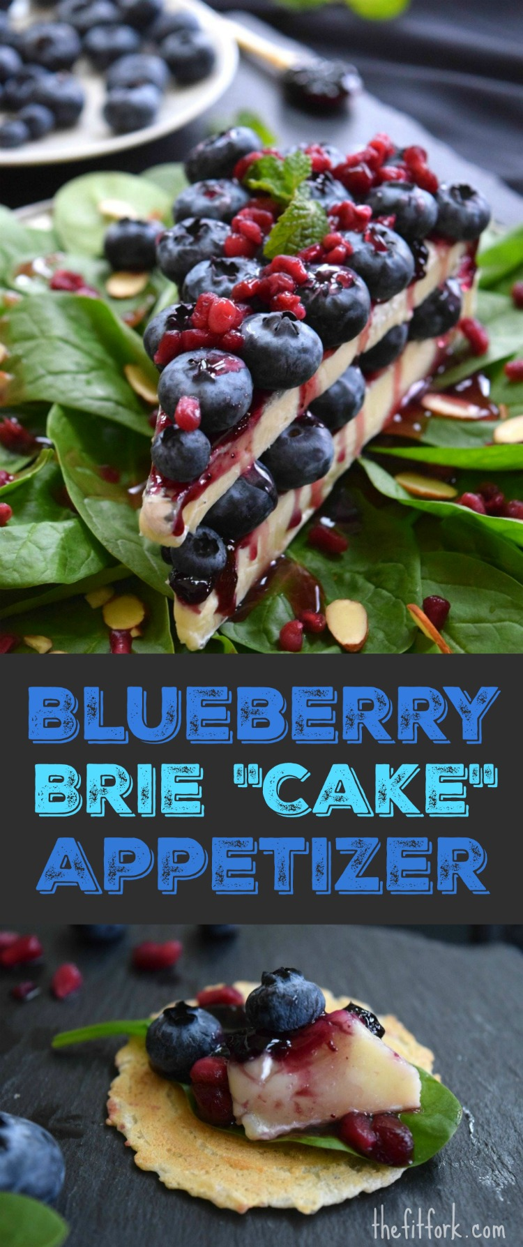 """Blueberry Brie Cheese """"Cake"""" Appetizer is a fun, flavorful and festive cheese appetizer for a cocktail party or prelude to dinner! Since it looks like a slice of sweet cheesecake, this sweet-savory recipe will be a real conversation starter for all your entertaining."""